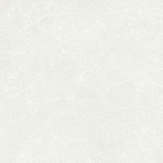 Lily-White.jpg